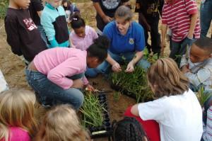 biológus, a beszélgetés, a diákok, a növény, a vízi növények