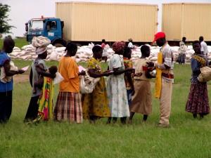 vérifier, formulaires, distribuer, la nourriture, le camp, en interne, les personnes déplacées, les personnes