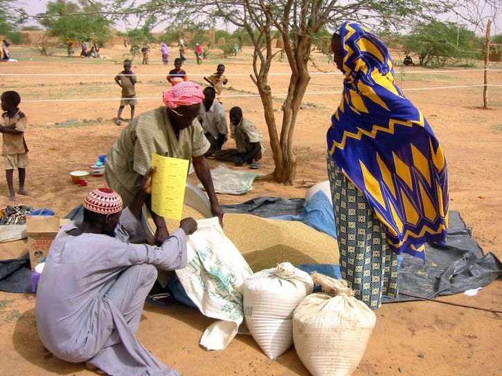 farmers, Niger, negotiate, seed, prices, vendors, seed, fair, central, Zinder, district