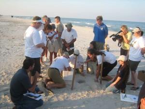 group, men, women, beach