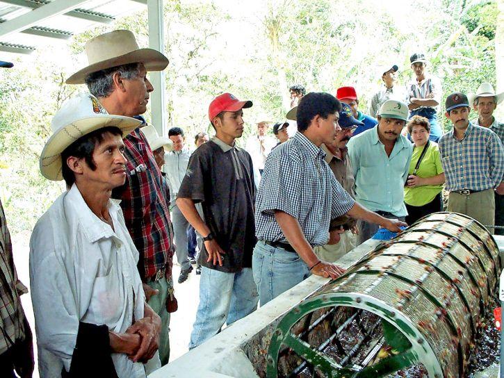 tagok, Gorrion, kávé, együttműködési, Yali, Nicaragua, néz, bemutató