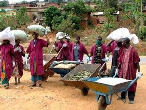 neighborhood, recycling, project, recycling, project, Kigali, cleans, neighborhoods, creates, jobs
