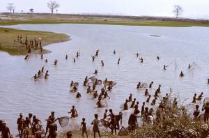 numbers, Bengali, townsfolk, whod, gathered, net, fish