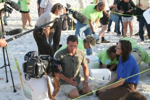 television, crew, shooting, movie, turtle, nest, excavation, relocation