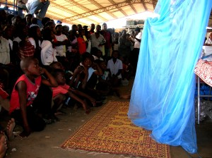 young, village, boys, mozambique, observe, long, lasting, insecticide, treated, bed, net, demonstration