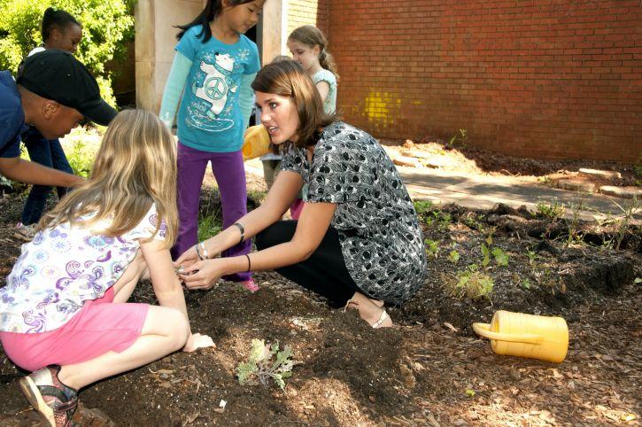 diskutieren, Pflanzen, Garten, neigten, Klasse