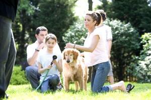 family, together, enjoying, outside
