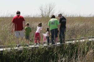 family, walk, wildness
