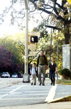 father, holding, hands, two, young children, crossing, street