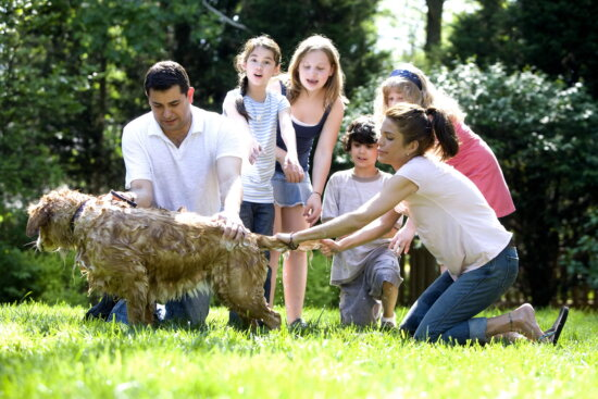 father, children, steadying, pet, leash, hands
