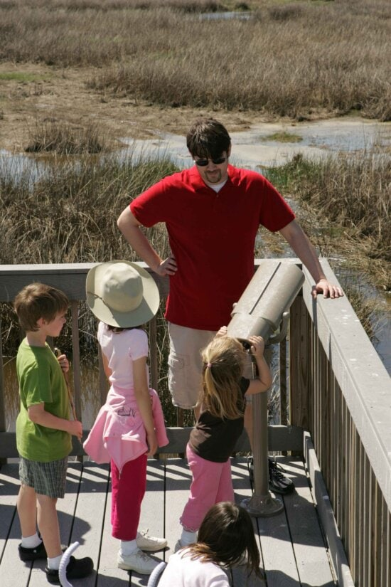 father, children, visiting, nature