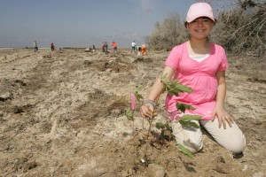 girl, scout, volunteer, shows, pride, planting, tree