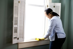African American, woman, preparing, window, home, general, cleaning