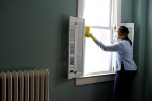 phụ nữ, làm sạch, cửa sổ, hạt, bụi, phấn hoa, trang chủ