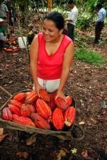 Amazonia, chocolate, Ecuador, women, cocoa beans, chocolate