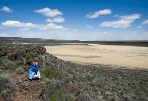 female, nature, enjoying, birdwatching, overlook