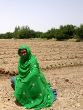 female, traditional, suit, agriculture, field, Murtad, Kilan, Balochistan, Pakistan