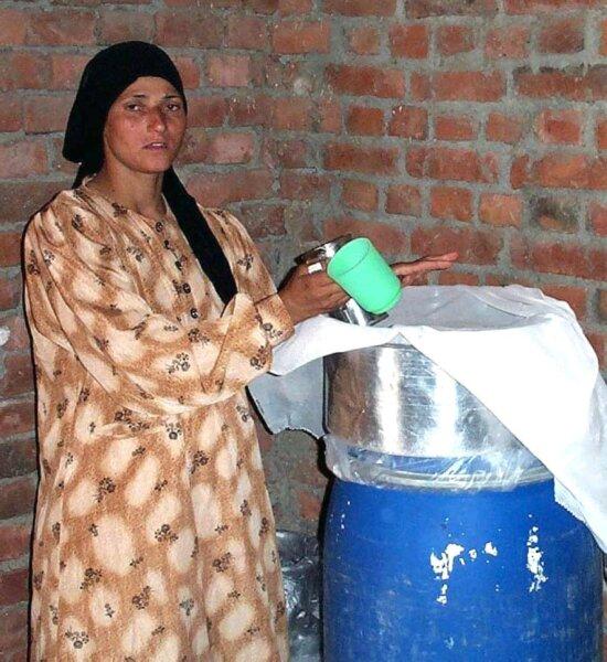 female, milk, farmer, Egypt