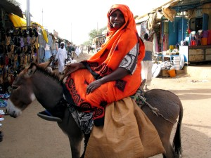 female, donkey, market, Sudan