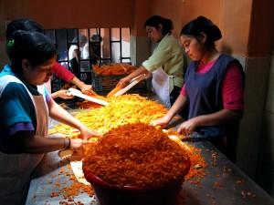 Žena, dělníci, zelenina, rostliny, Guatemala