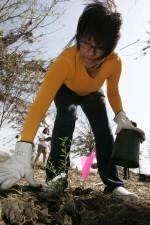 femme, travaux, jardin