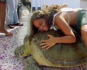 girl, back, green, sea, turtle