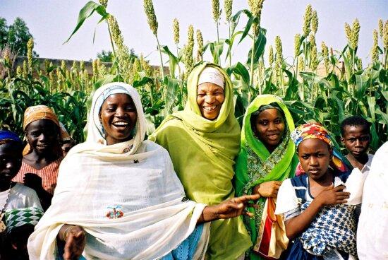 grupo, mujeres, Nigeria