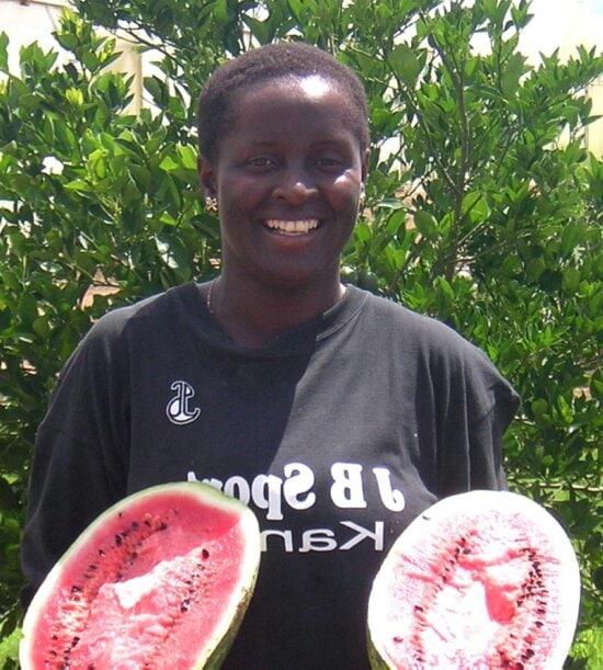 melon, farmer, Gabarone, Botswana, Africa
