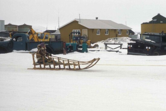 native, Alaskan, woman, dogsled, snow