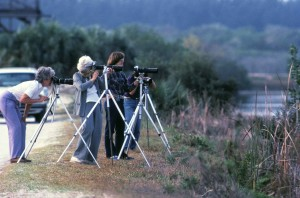 older women, enjoy, photographing, nature, wildlife