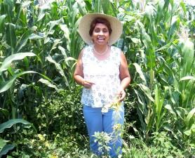 women, farmer, corn, field, irrigation system, crops