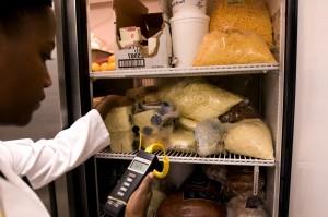 복용, 열, 판독, 내용, 냉장고, 전자, 온도계
