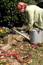 jardinage, femme, dehors, journée ensoleillée, travail, arrière-cour