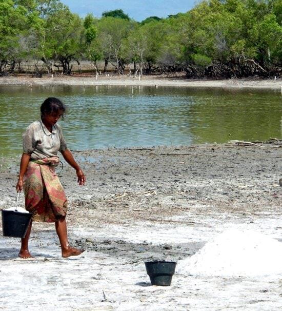 mujer, Laga, lago, este, Timor, ayuda, comunidad, sal