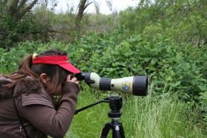 Žena, fotograf, fotoaparát, objektiv