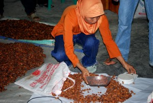 woman, scoops, cocoa, beans, weighed, graded, quality, cocoa, trading, station