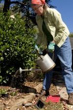 woman, outdoors, sunny day, work, backyard, garden