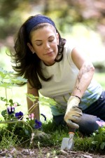 kadın, aşınma, eldiven, bekçi, pozlama, pestisitler, sıyrıklar, böcek, ısırıkları