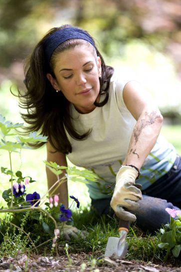 жена, облекло, ръкавици, охрана, експозиция, пестициди, ожулвания, насекоми, хапки