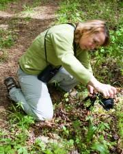 women, photographer, taking, macro, image, plants
