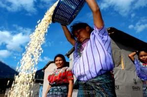 a nők, a munkavállalók, Panabaj, Solola, Guatemala
