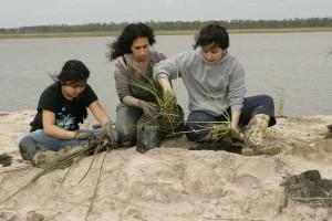 jeunes, les femmes, prêts, plante, marais, herbe, boue, terre, rivière