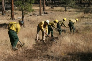 fireman, crew, prrpares, line, prescribed, fire, burn