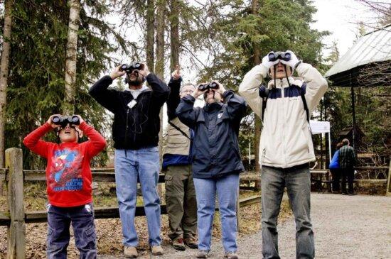 group, people, look, binoculars