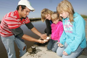 happy, family, outdoor, observes, shucked, oyster