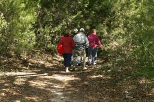 Turisti, tešiť, výlet, divoké, chodník