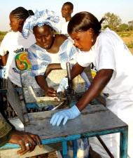 local, Senegal, citizens, demonstrate, technique, processing, cashews