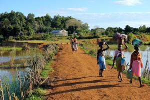 Madagaskar, ludzie, praca