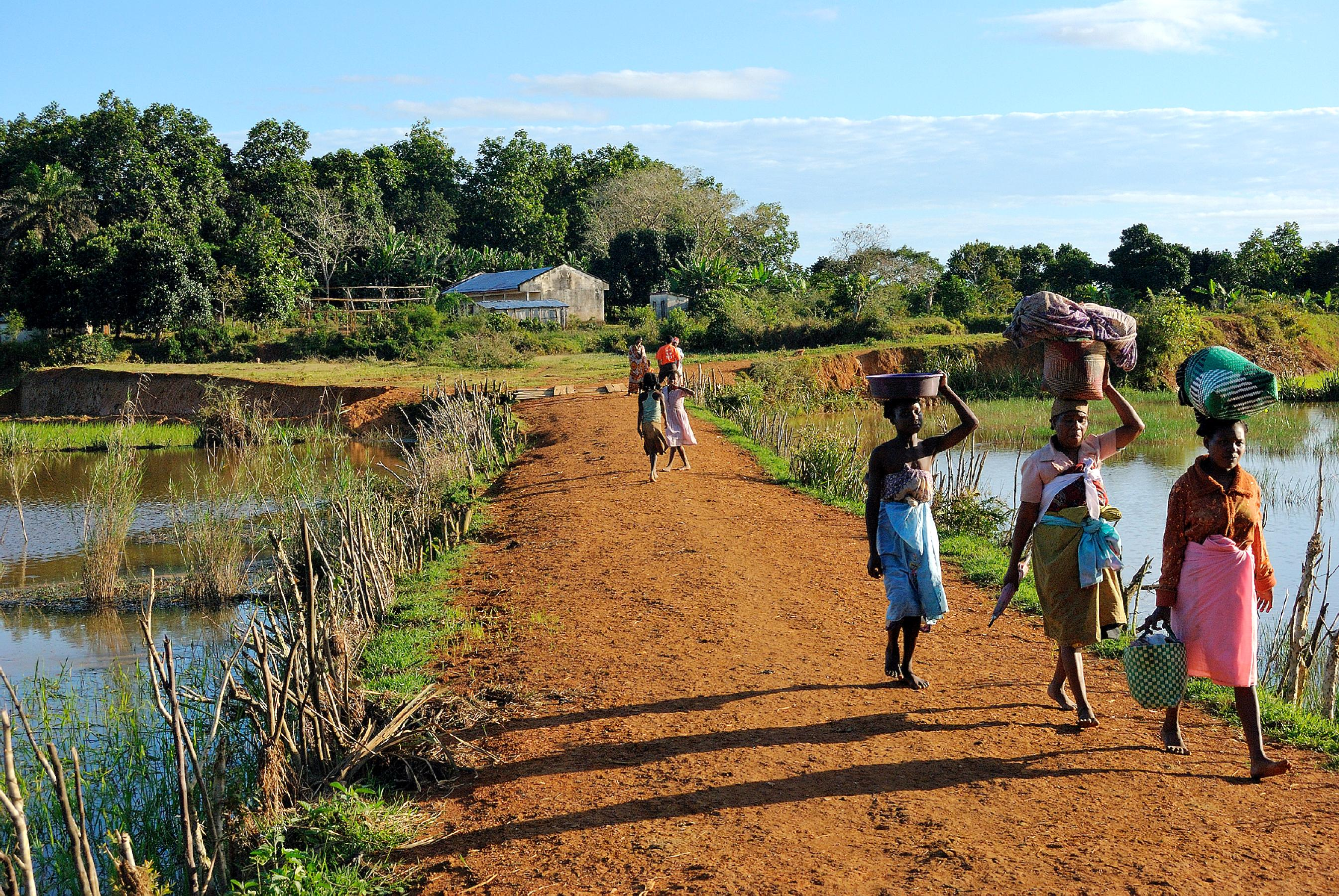 Free Picture Madagascar People Working