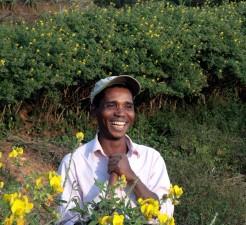 Afrikansk, mann, smil, blomster, felt